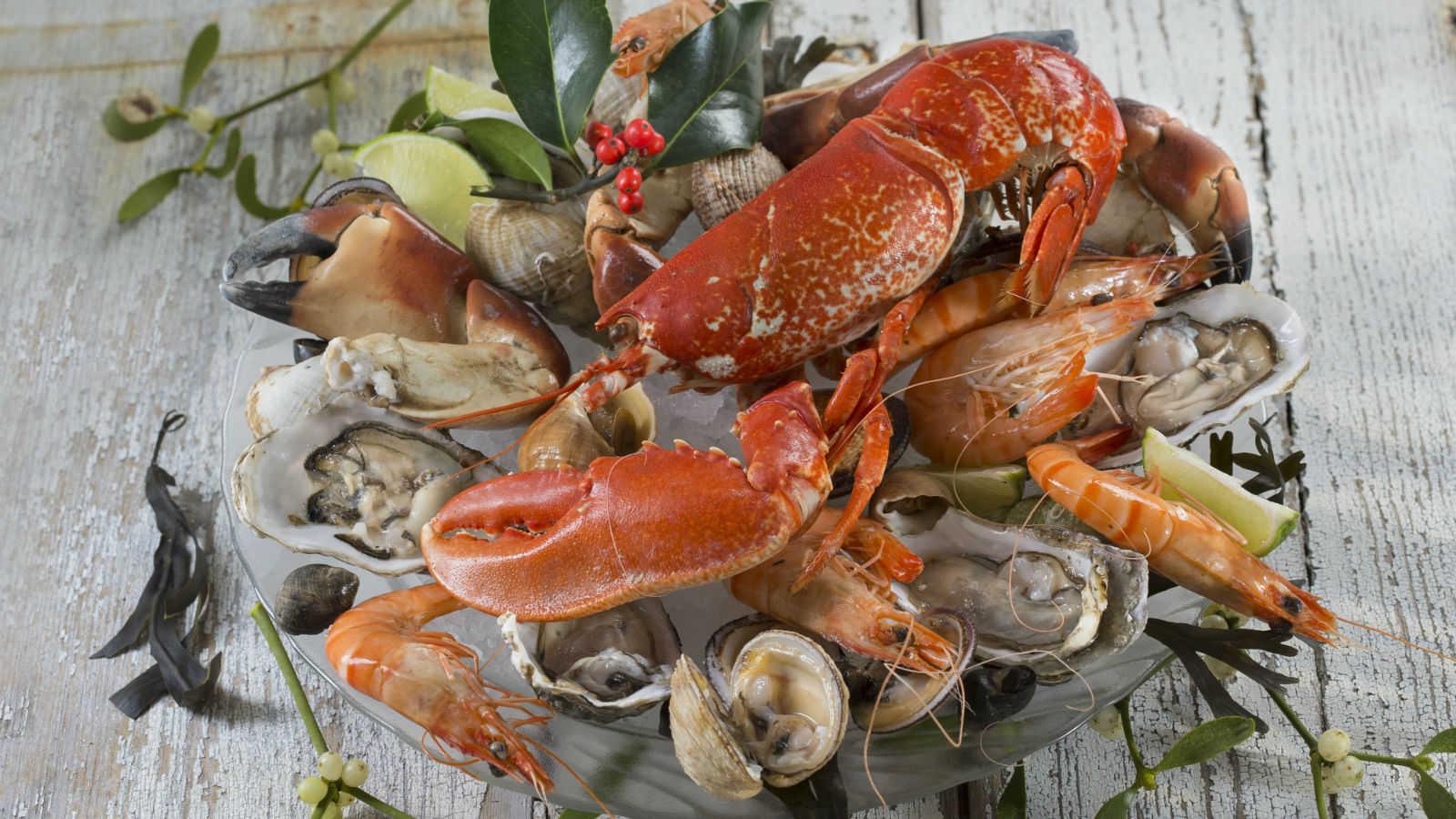 Resultado de imagem para frutos do mar